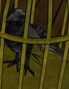 CW Crooked Man Raven