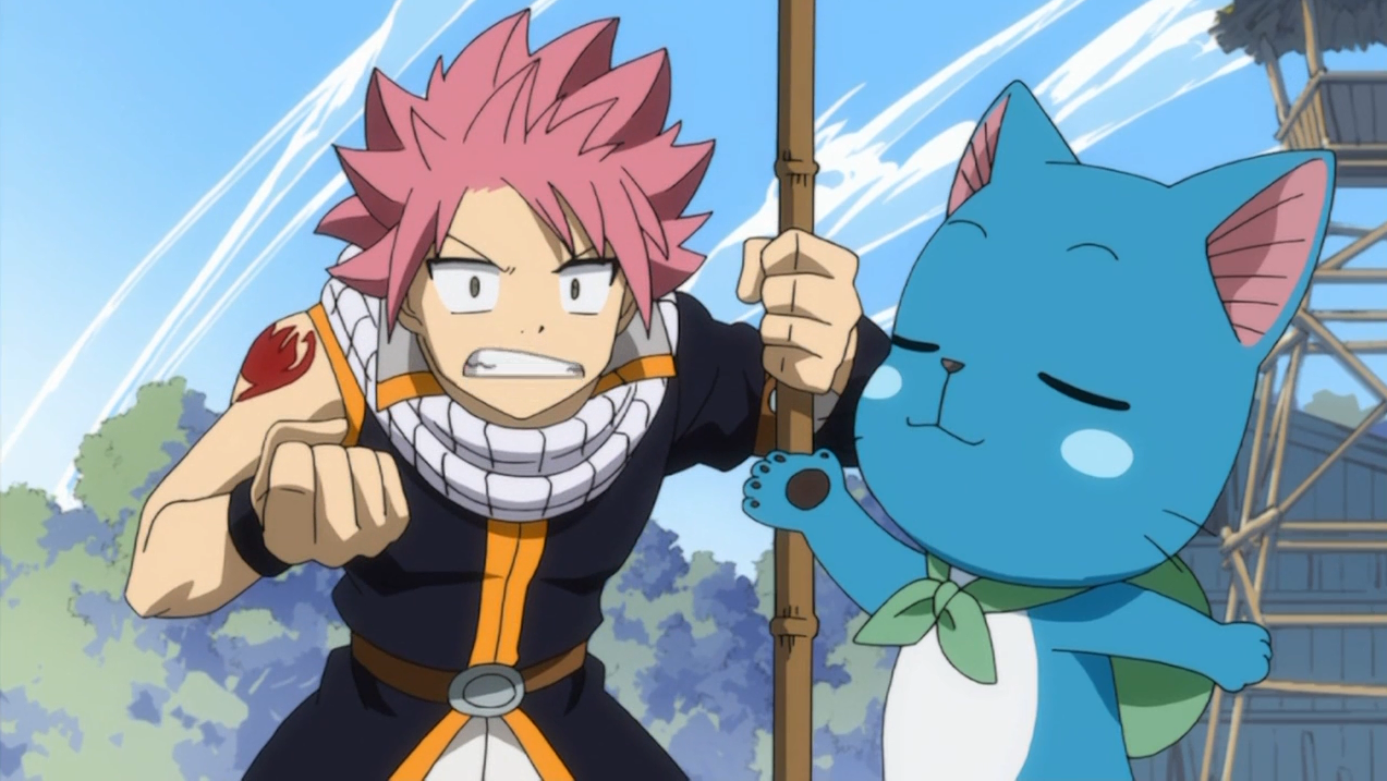 Fichier natsu et happy se bagarrant png fairy tail wiki - Fairy tail happy and natsu ...