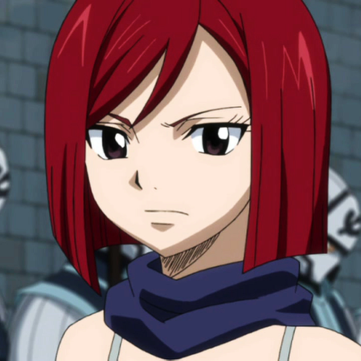 Erza Knightwalker | Fairy Tail Wiki | FANDOM powered by Wikia