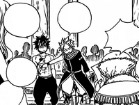 A job for Natsu and Gray.png