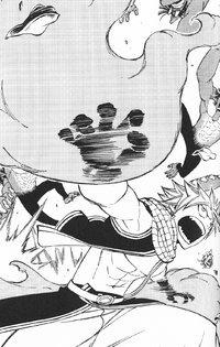Light Novel - Natsu Rampaging