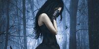 Fallen (novel)
