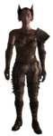 Raider Sadist Armor