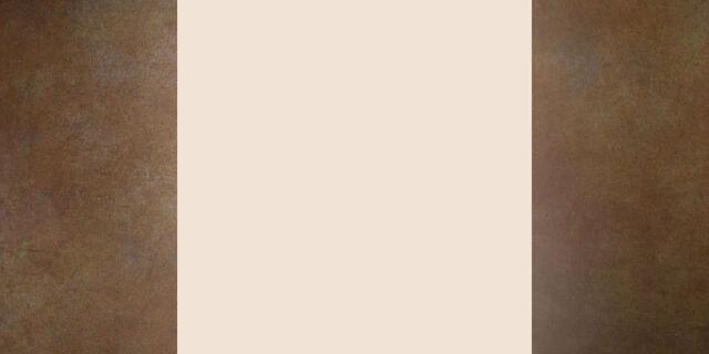 File:NukaPedia Background White Metal JPG5- Rusted.jpg