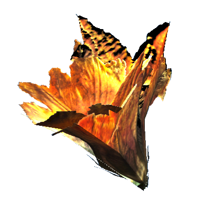 File:Gourd blossom.png