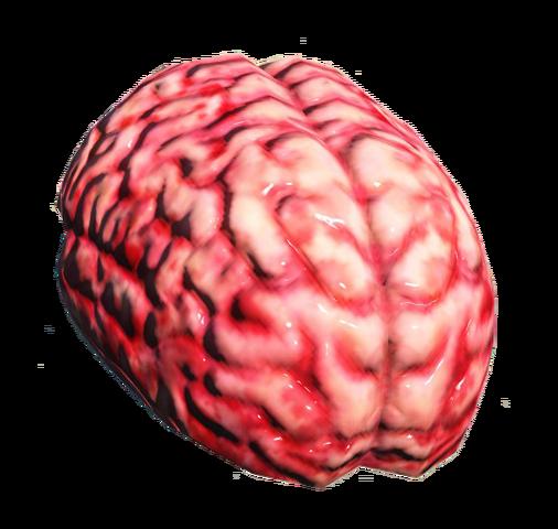 File:Fo4 brain.png