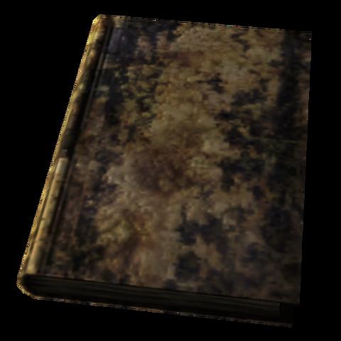 File:Large Destroyed Book.png
