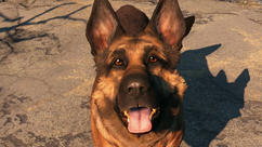 Fo4 Dogmeat E3 Outtro