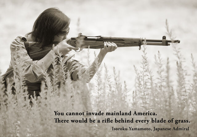 File:RifleBehindGrass.jpg