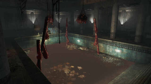 File:FO4FH-Aldersea-Pool.jpeg