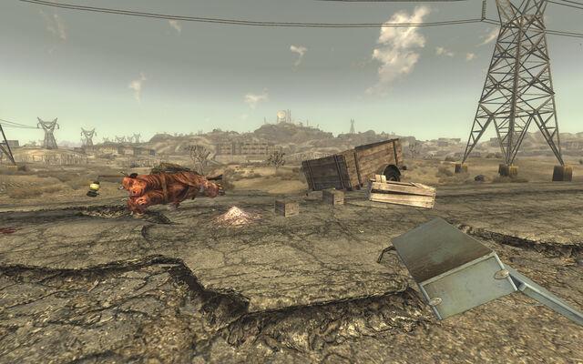 File:Cassidy Caravans Wreckage.jpg