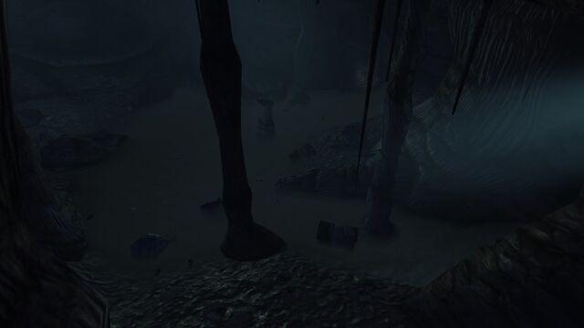 File:Damp cave2.jpg
