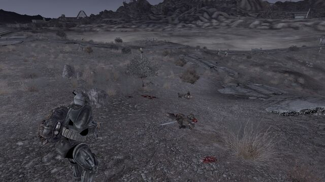 File:NCR Rangers tried to avenge after west scouting.jpg