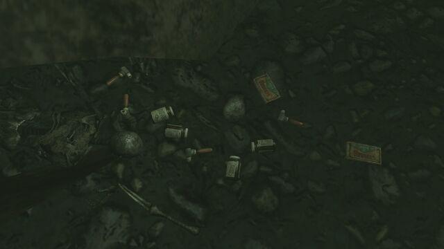 File:FO3PL Additional submerged treasure 4 loot.jpg