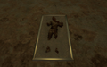 Han Solo in carbonite.png