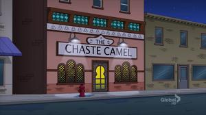 Chastecamel
