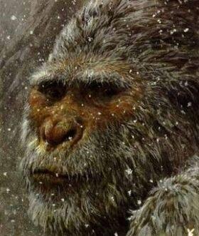 Снежный человек — Википедия