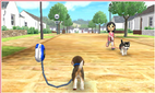 Nintendogs Walk