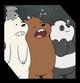 BearsBox