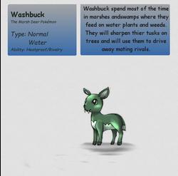 WashbuckPKMN