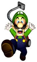 LM Luigi Flee