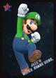 Luigi - JSSB amiibo card