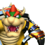 MSC Mugshot Bowser