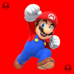 01 MarioDojo