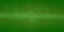 SFL Green