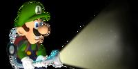 New Super Mario Bros. Fantendo Frenzy