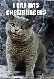 File:I Can Haz Cheezburger.jpg