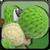 Yarn Yoshi CSS Icon