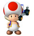Toad mkcr