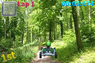 File:Luigi warioswoods.png