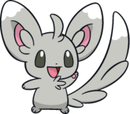 572Minccino Dream