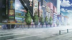 Akihabara - Steins;Gate
