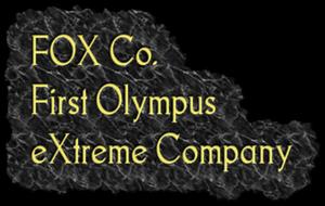 File:FOX Co. Logo.png