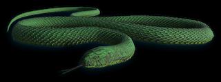 FC3 cutout snake