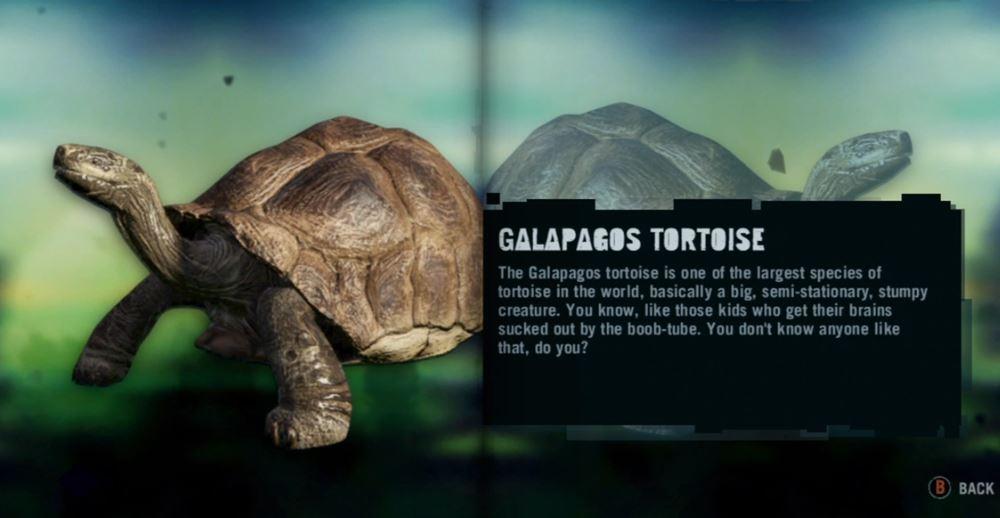 Galapagos Tortoise Far Cry Wiki Fandom Powered By Wikia