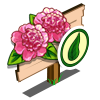 Organic Ballet Queen Flower Mastery Sign-icon