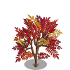 Smooth Sumac Tree-icon