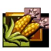 random crop image