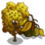 Bitternut Hickory Tree-icon