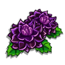 Dark Dahlia-icon