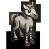Connemara Pony Foal-icon