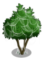Avocado Tree3-icon.png
