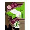 Organic Onion Stall-icon
