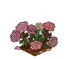 Wither Bunch Pink Rose-icon