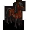 Morgan Horse-icon