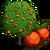 Blood Orange Tree-icon
